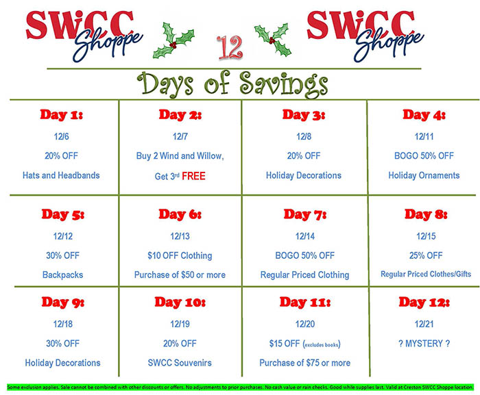 12 Days of Savings Flyer
